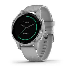 vivoactive 4S - Powder Grey with Silver Hardware